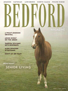 Bedford Magazine - DPD Builders article